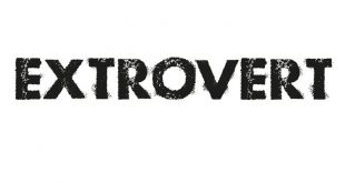 Extrovert Walkin Drive